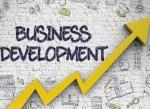 Small business development services