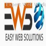 EASY WEB SOLUTIONS Institute